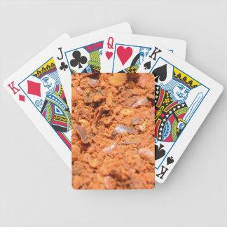El mundo de la especia barajas de cartas