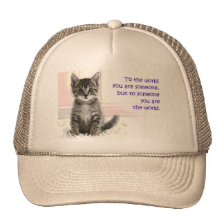 El mundo del gatito gorro