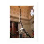 El museo americano de la historia natural, NYC Tarjeta Postal