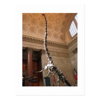 El museo americano de la historia natural NYC Tarjeta Postal