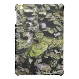 El musgo cubrió la pared de piedra