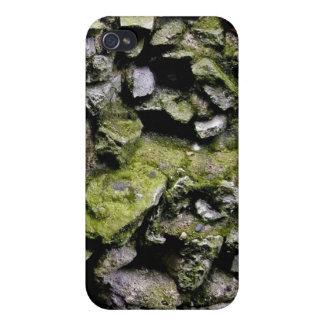 El musgo cubrió la pared de piedra iPhone 4 carcasa