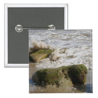 El musgo cubrió las rocas, botón cuadrado