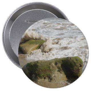 El musgo cubrió las rocas, botón enorme