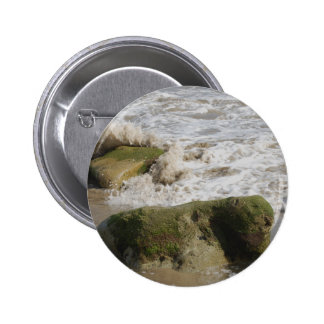 El musgo cubrió las rocas, botón estándar