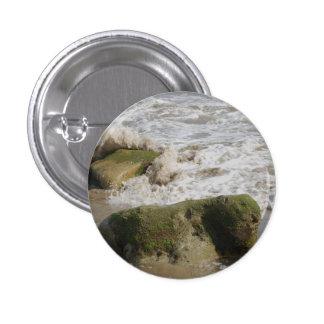 El musgo cubrió las rocas, pequeño botón