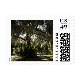 El musgo español cubrió el árbol de la isla timbres postales