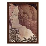 El nacimiento del detalle de Venus de Botticelli S Tarjeta Postal