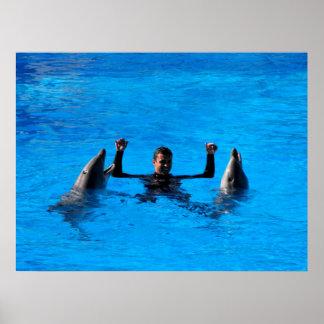 El nadar con los delfínes en España Posters
