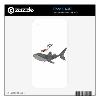 El nadar con Whaleshark iPhone 4 Calcomanías