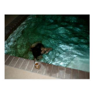 El nadar tarjeta postal