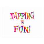 El Napping es diversión Tarjeta Postal