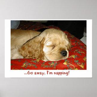 El Napping Impresiones