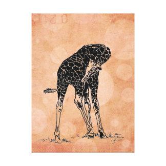 El naranja circunda la lona envuelta ~ de la jiraf impresión en lienzo