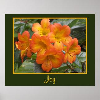 El naranja de la meditación del zen de la alegría  impresiones