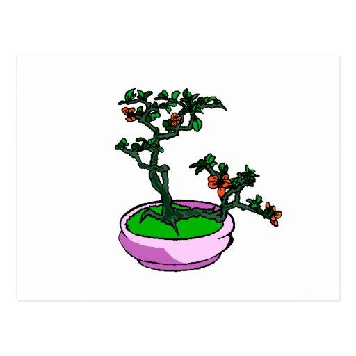 El naranja de los bonsais de la azalea florece el  postal