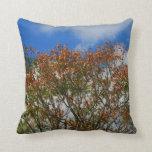 El naranja del cielo azul del árbol florece imagen almohadas