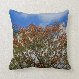 El naranja del cielo azul del árbol florece imagen cojín