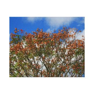 El naranja del cielo azul del árbol florece imagen impresiones en lienzo estiradas