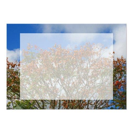 El naranja del cielo azul del árbol florece imagen invitación 12,7 x 17,8 cm