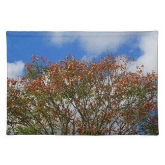 El naranja del cielo azul del árbol florece imagen mantel individual