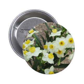 El narciso blanco florece el botón pin redondo de 2 pulgadas