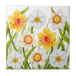 El narciso del jardín de la primavera florece la t azulejos cerámicos