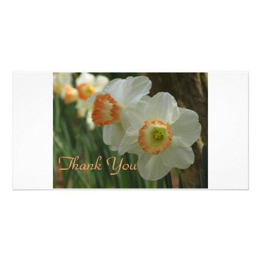 El narciso le agradece plantilla para tarjeta de foto