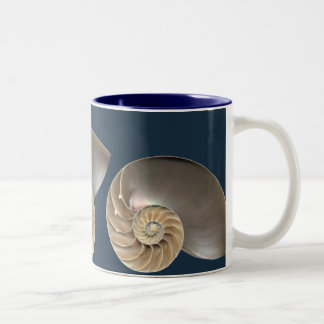 El nautilus descasca la taza 2