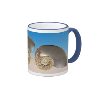 El nautilus descasca la taza 4