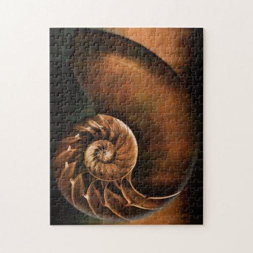 El nautilus Shell desconcierta Rompecabeza