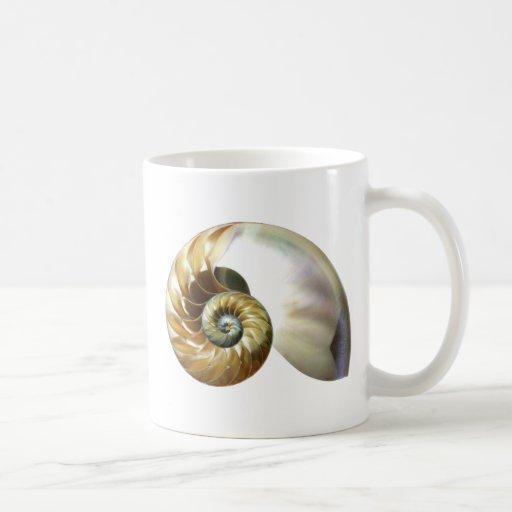 El nautilus Shell Taza De Café