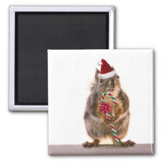 El navidad atesora con el bastón de caramelo imán cuadrado