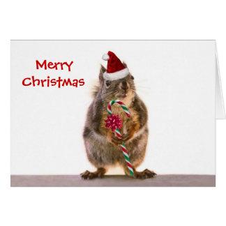El navidad atesora con el bastón de caramelo tarjeta de felicitación