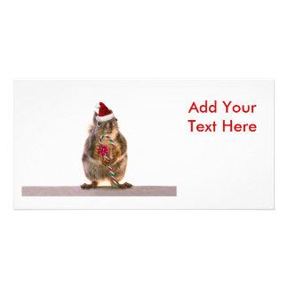 El navidad atesora con el bastón de caramelo tarjetas personales