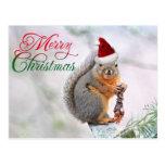 El navidad atesora el gorra de Papá Noel que lleva Postales