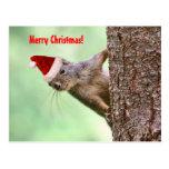 El navidad atesora en un árbol postal