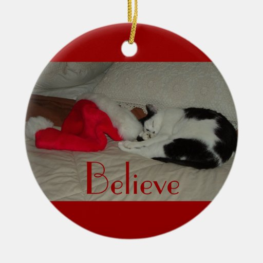 El navidad cree el gato del gatito ornamentos de reyes