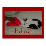 El navidad cree el gato del gatito tarjeta postal