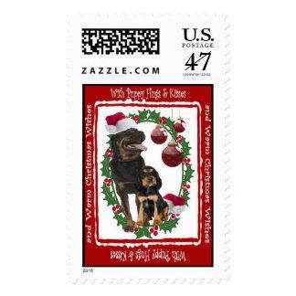 El navidad de Rottweiler abraza y besa el sello