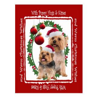 El navidad de Terrier sedoso abraza y besa la post Postal