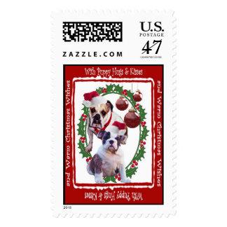 El navidad del dogo abraza y besa el sello