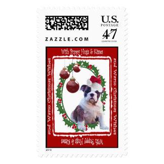 El navidad del dogo abraza y besa el sello #2