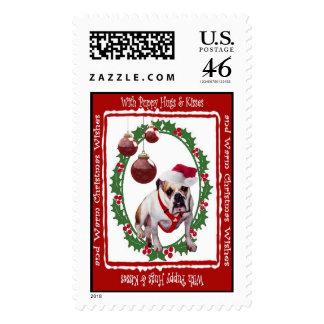 El navidad del dogo abraza y besa el sello 3