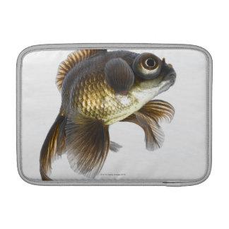 El negro amarra el goldfish (auratus del Carassius Fundas Para Macbook Air