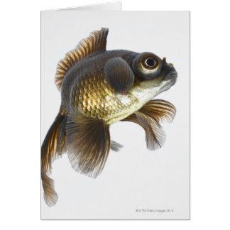 El negro amarra el goldfish (auratus del Carassius Tarjeta De Felicitación