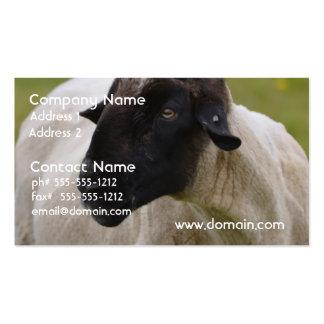 El negro hizo frente a ovejas tarjeta de negocio