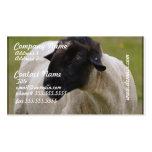 El negro hizo frente a ovejas tarjetas de negocios