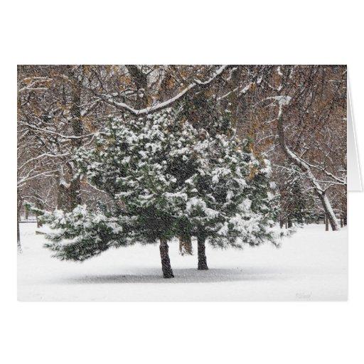 El nevar tarjeta de felicitación