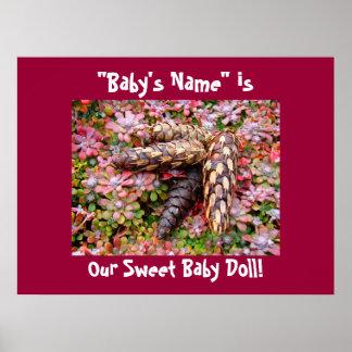 El nombre del bebé es nuestro arte dulce Pinecones Póster